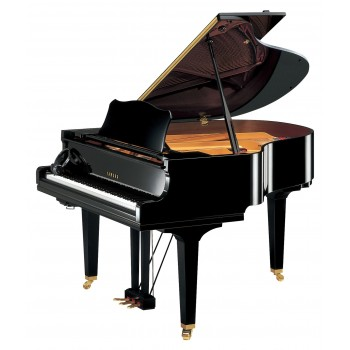 PIANO A QUEUE ACOUSTIQUE GC1 SH YAMAHA