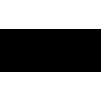 SP-34 CASIO