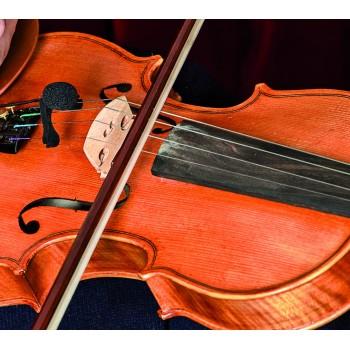 VL21 Lanen Violin & Alto PRODIPE