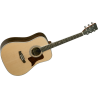 15NS Dreadnought - Naturel satin