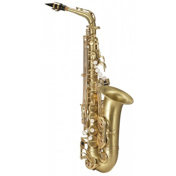 SAXOPHONE ALTO ANTIGUA AS-4248CB